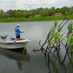 Hardie's Lagoon is a large flood plain billabong.
