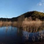 Lake Eildon near the Candlebark Campground