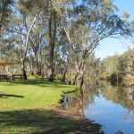 The Horse Hole, the local swimming hole in the Glenelg River beside the caravan park.
