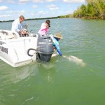 Ian Leighton releases a big Mitchell River barramundi
