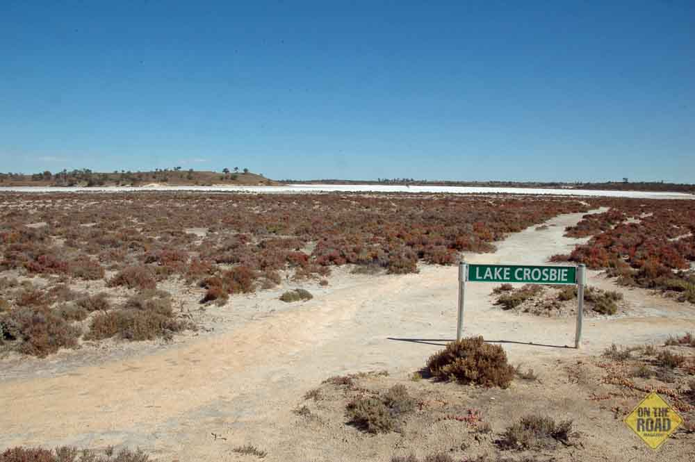 how to grow dessert rose in south west western australia