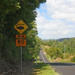 Speed restrictions protect cassowaries on some roads around Mission Beach.