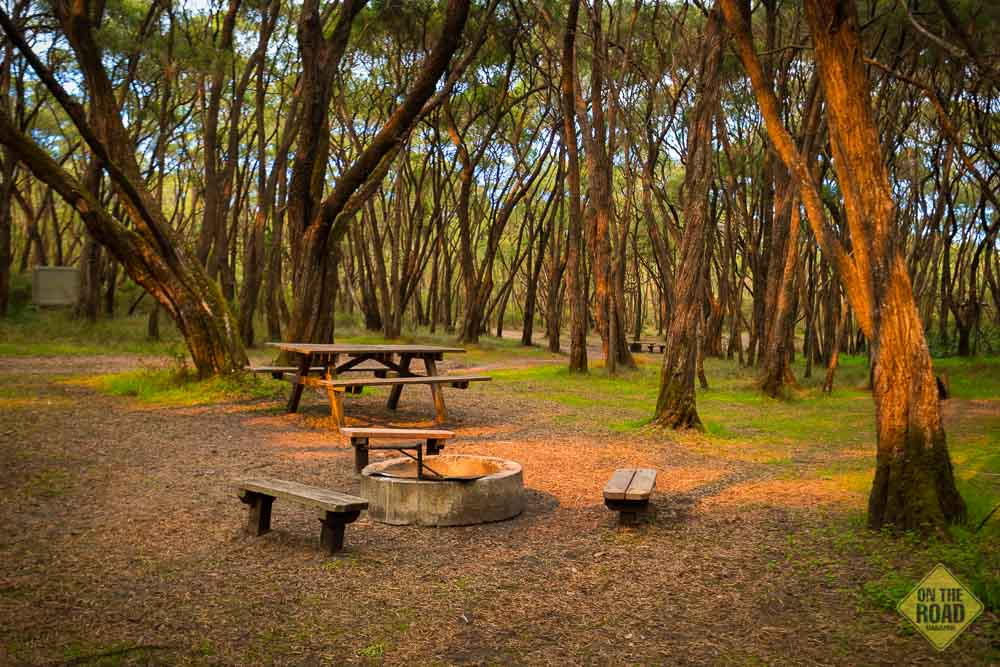 Part 2 Point D Entrecasteaux To Crystal Springs On The