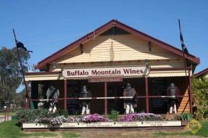 Buffalo Mountain Wines