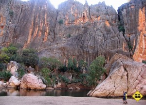 Inside Windjana gorge