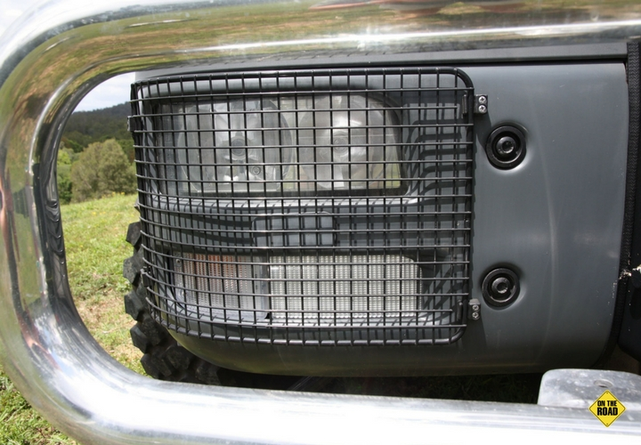 Mesh headlight protection