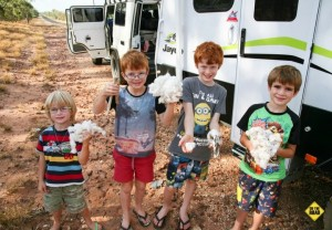 Queensland Van Trip - the four little blighters