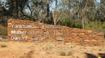 Dandry Gorge Free Campsite