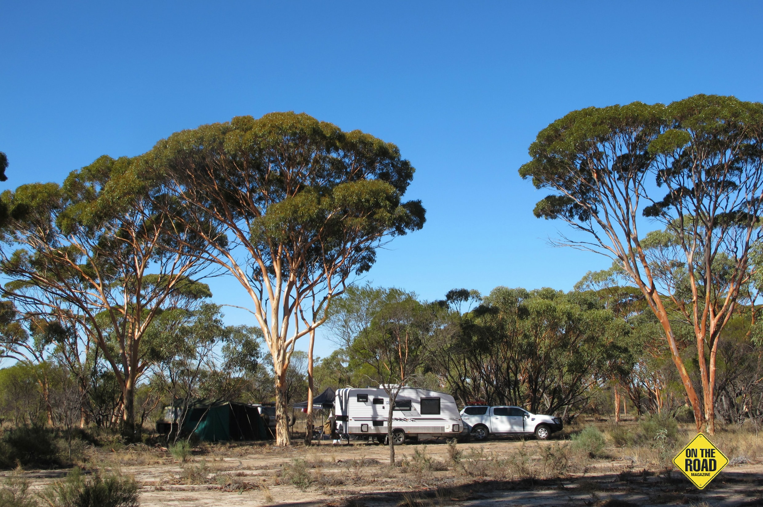 Camping under Salmon Gums at Kwolyin.