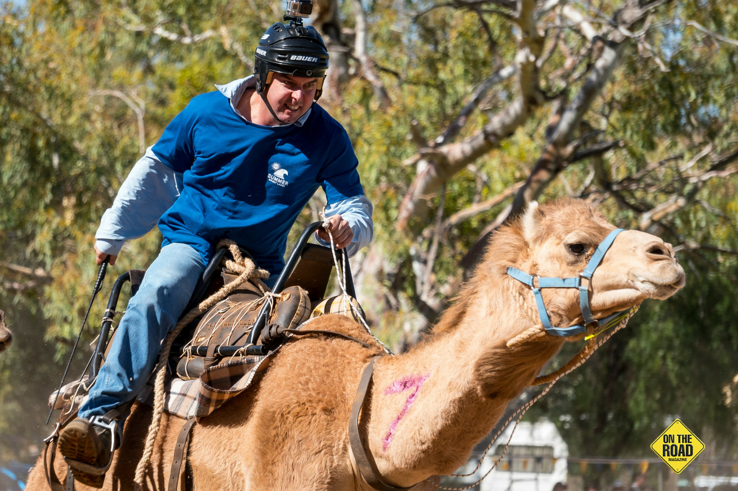For Alice Springs' jockeys, a win in the Camel Cup brings prestige to their camel operations