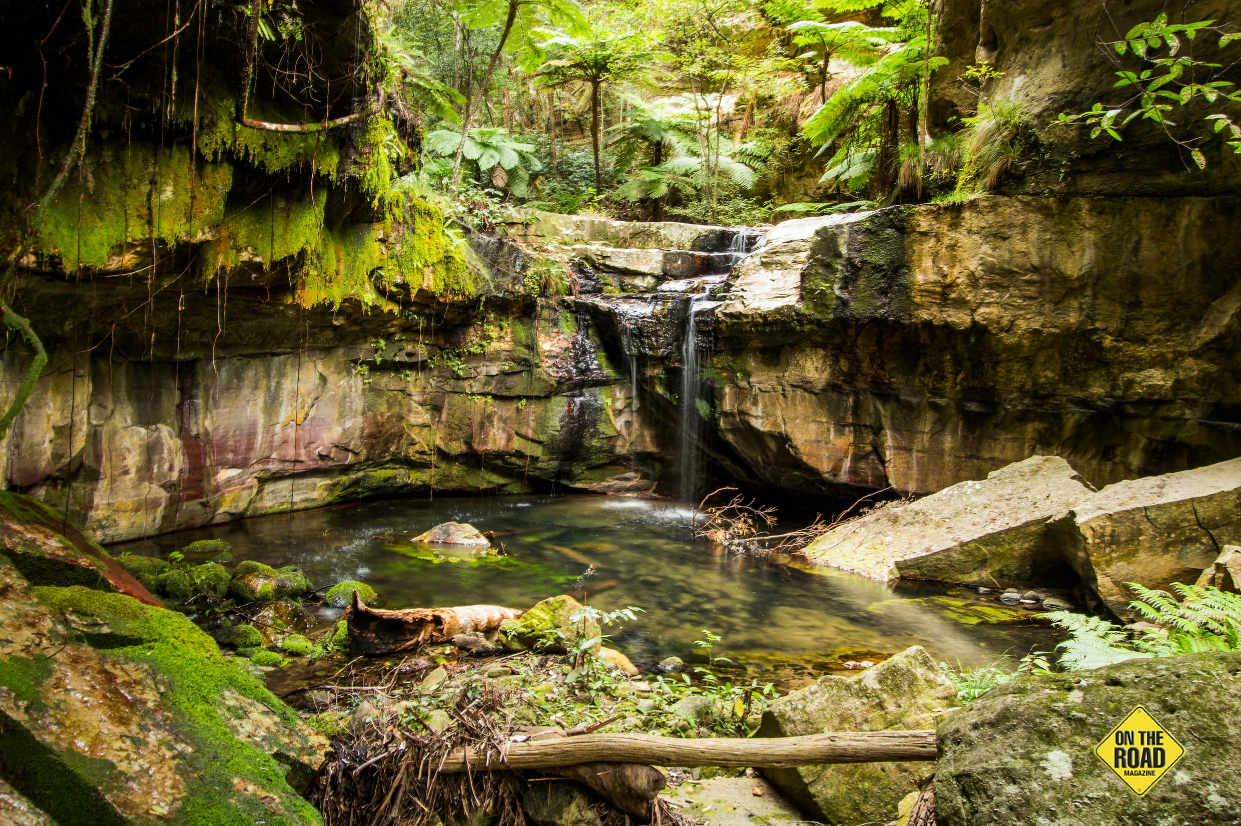The enchanting Moss Garden is the first of a number of delightful detours off the main walking track.
