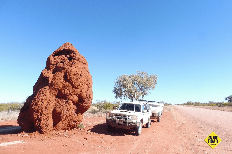 Largest termite mound on the plenty