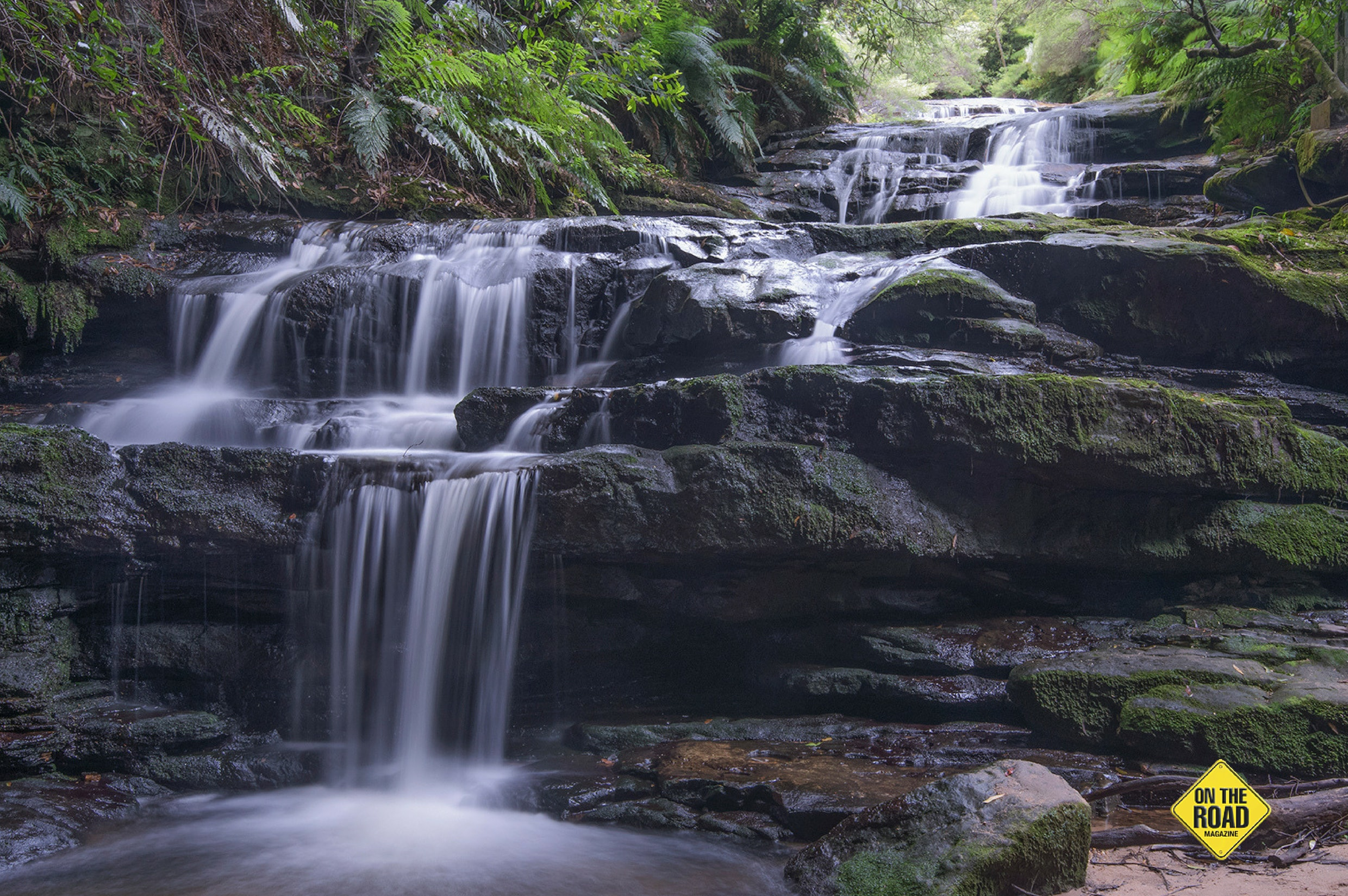 The beautiful and much photographed Leura Cascades