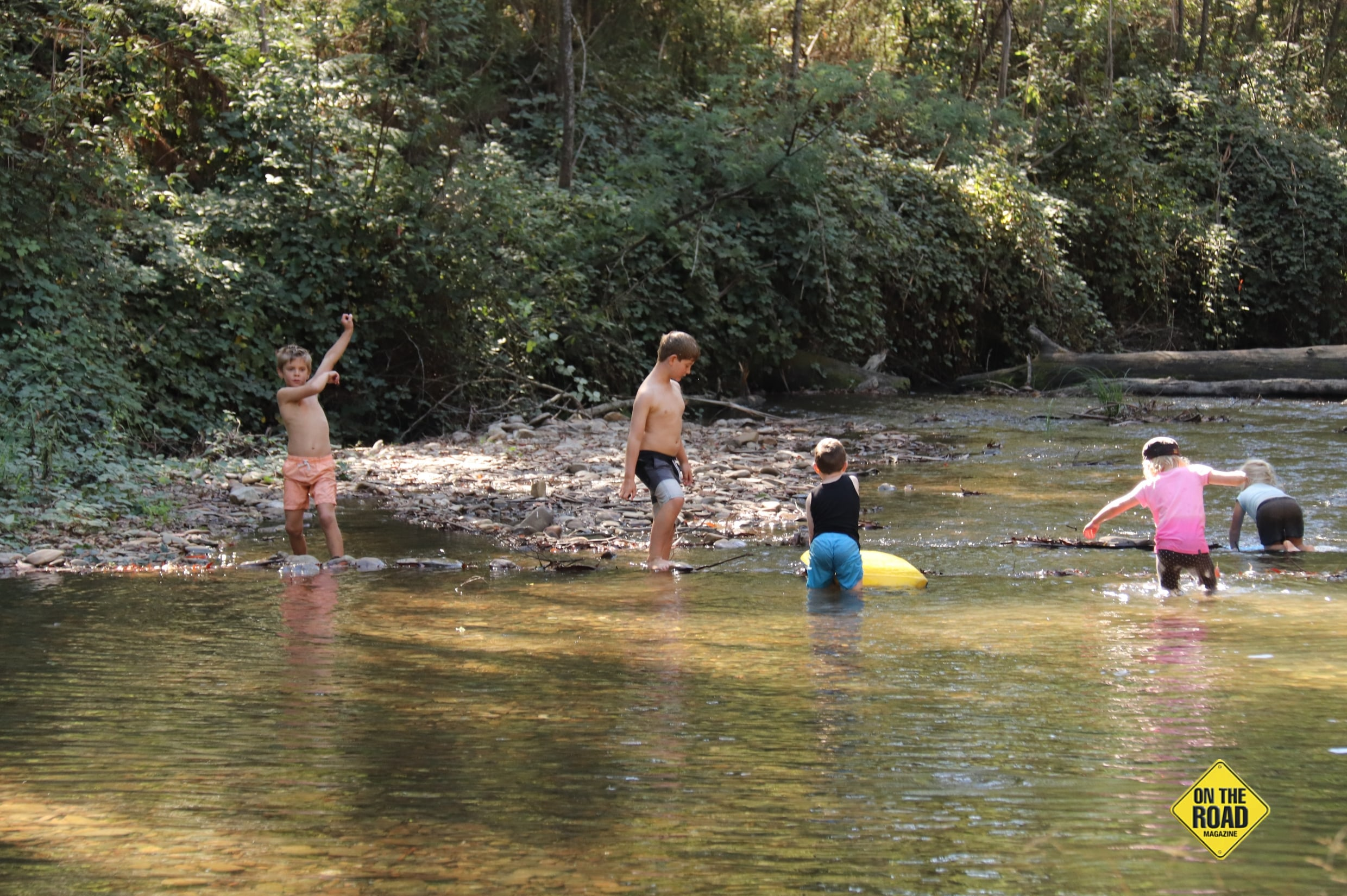Children playing at the creek