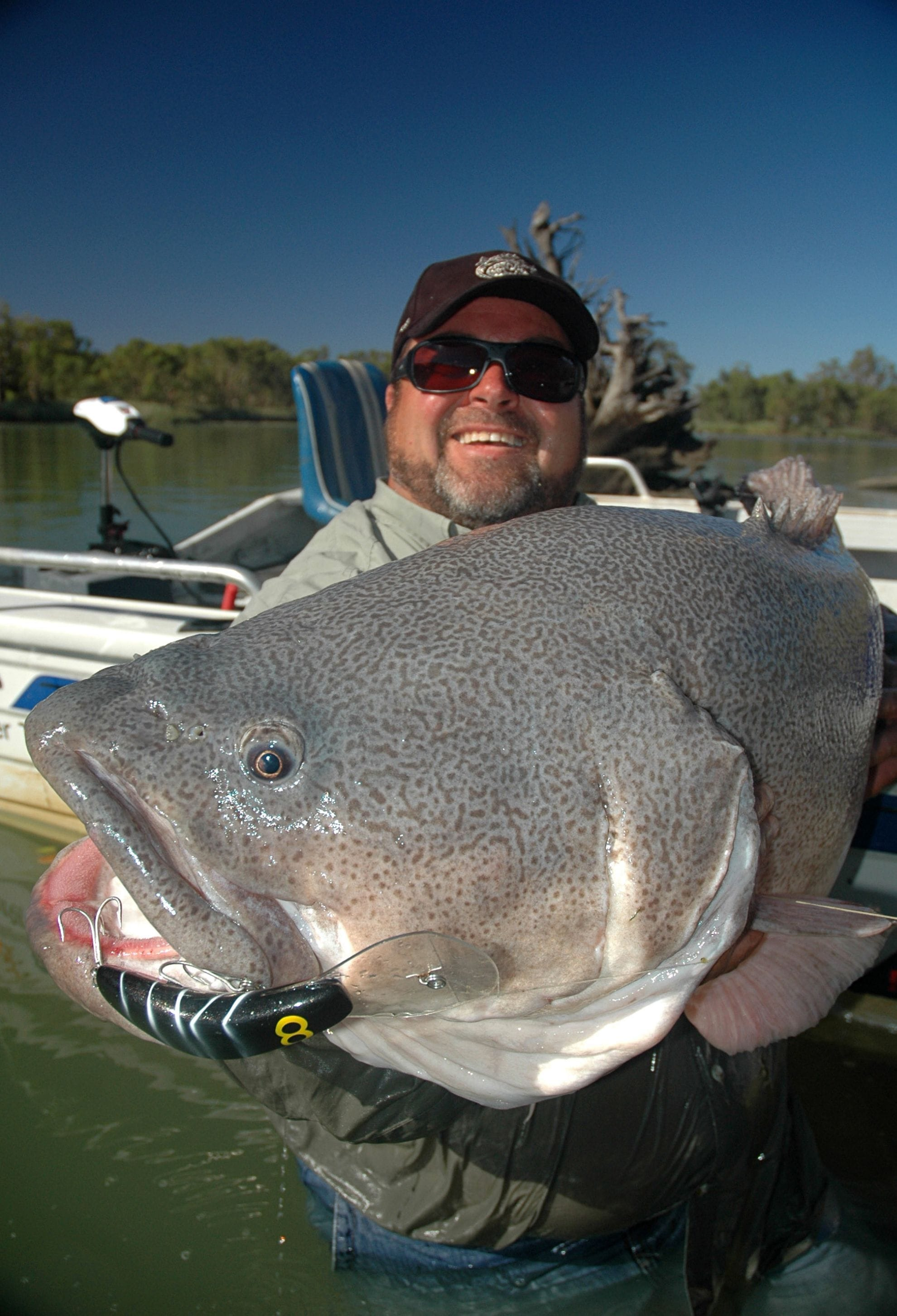 This big cod was caught in the Murray River by Gus Storer