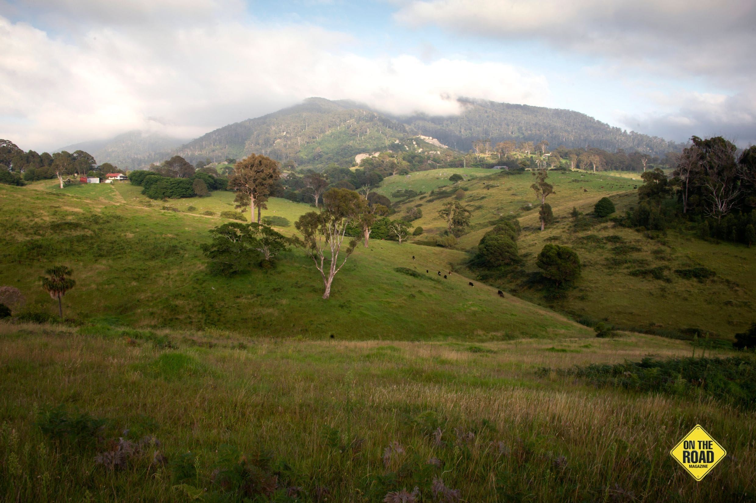 Mt Gulaga overlooking the beautiful undulating pastures in the Tilba region