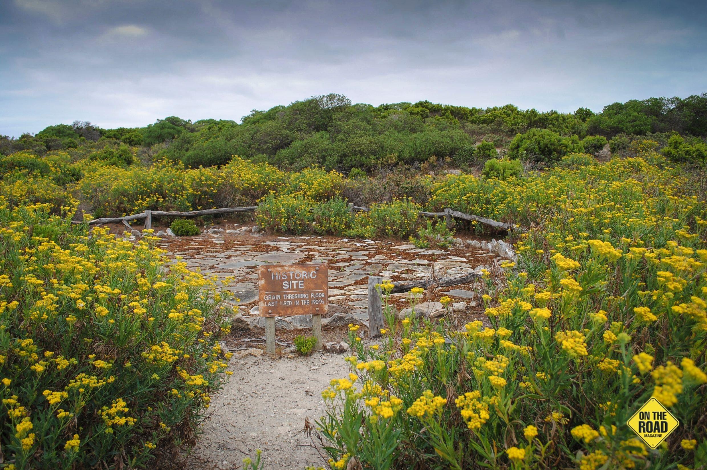 The Grain Threshing Floor in Cape Gantheaume Conservation Park